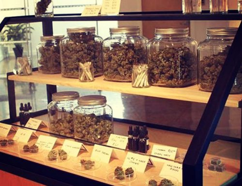 Are States that Legalized Marijuana Living Up to Their Social Equity Goals?